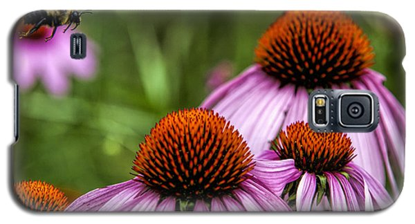 Flight Of The Honey Bee Galaxy S5 Case