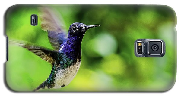 Galaxy S5 Case featuring the photograph Flight Of The Hummingbird by Rob Tullis
