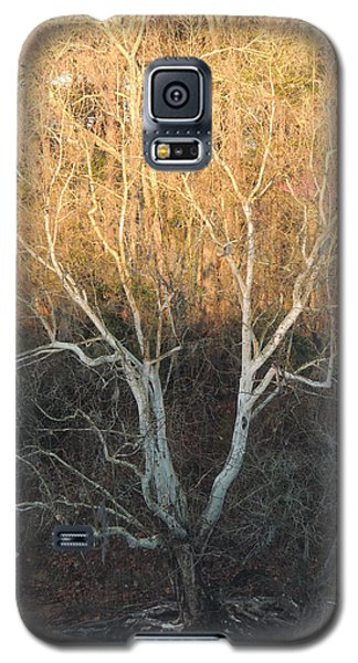 Galaxy S5 Case featuring the photograph Flint River 12 by Kim Pate