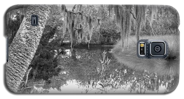 Galaxy S5 Case featuring the photograph Fllorida Swamp Lan 380 by G L Sarti