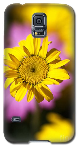 Galaxy S5 Case featuring the photograph Floating Daisy by Joy Watson