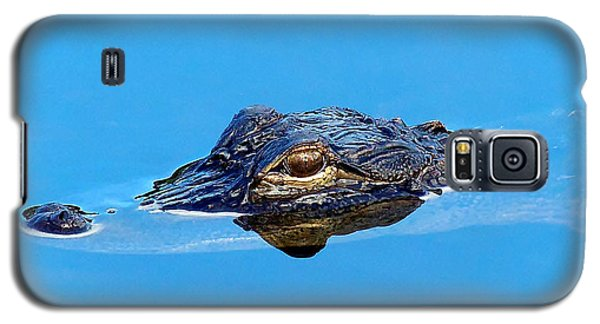 Galaxy S5 Case featuring the photograph Floating Gator Eye by Chris Mercer