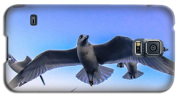 Floating On A Breeze  Galaxy S5 Case
