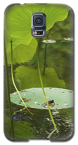 Galaxy S5 Case featuring the photograph Floating World #2 - Lotus Leaves Art Print by Jane Eleanor Nicholas