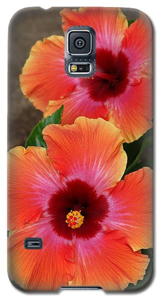 Floral Beauty 2  Galaxy S5 Case