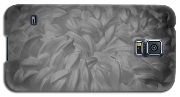 Galaxy S5 Case featuring the photograph Floral Caress by Mary Zeman