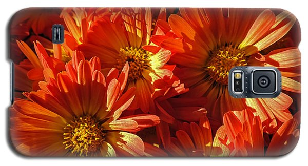 Floral Frenzy Galaxy S5 Case