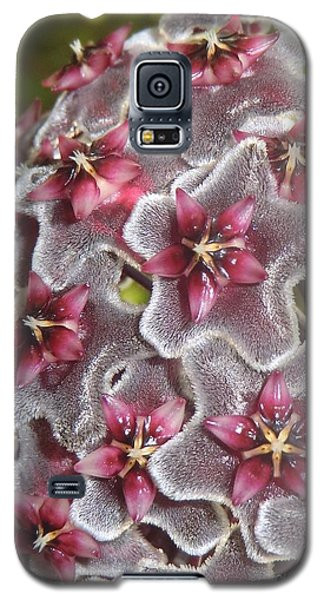 Floral Presence - Signed Galaxy S5 Case