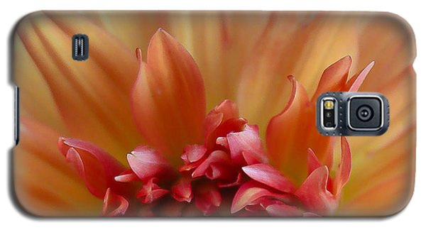 Floral Sunrise Galaxy S5 Case by Geri Glavis