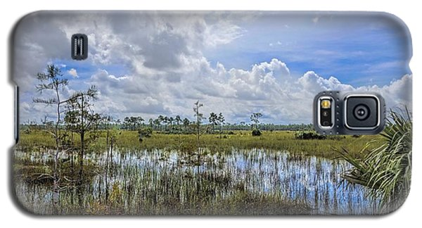 Florida Everglades 0173 Galaxy S5 Case