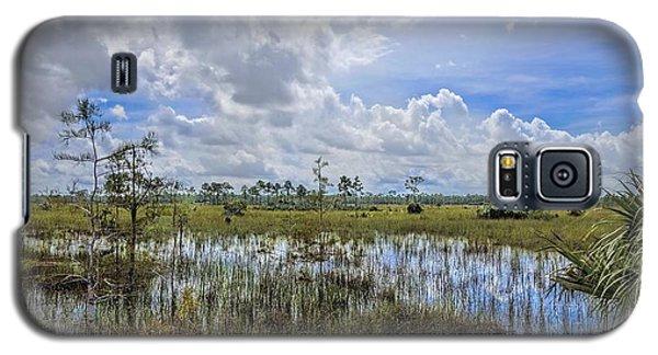 Florida Everglades 0173 Galaxy S5 Case