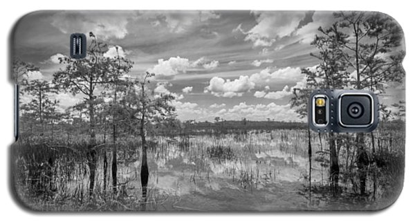 Florida Everglades 5210bw Galaxy S5 Case