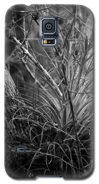 Galaxy S5 Case featuring the photograph Florida Everglades by Joseph G Holland