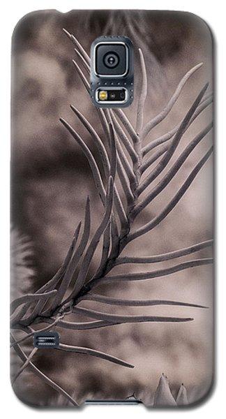 Florida Flora 1 Galaxy S5 Case