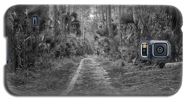 Florida Forest  Lan 381 Galaxy S5 Case by G L Sarti