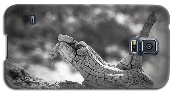 Galaxy S5 Case featuring the photograph Florida Keys Driftwood by Bradley R Youngberg