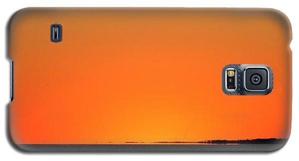 Florida Orange Galaxy S5 Case