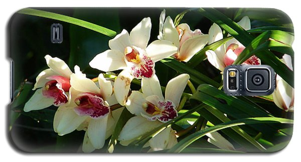 Florida Orchids Galaxy S5 Case