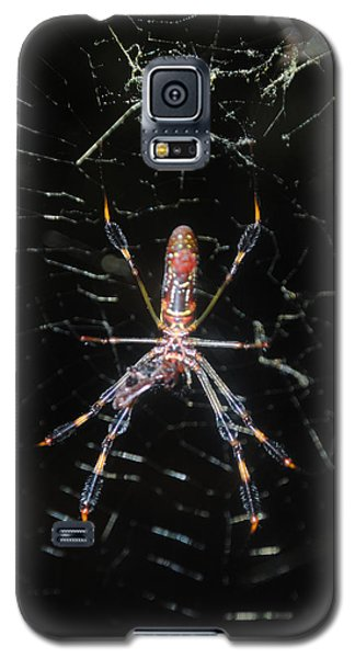 Insect Me Closely Galaxy S5 Case
