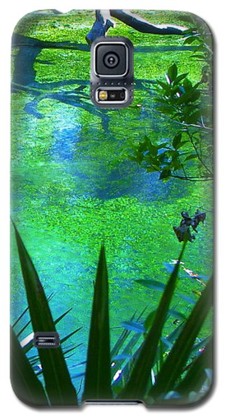 Florida Swamp With Driftwood Galaxy S5 Case
