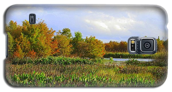 Florida Wetlands August Galaxy S5 Case