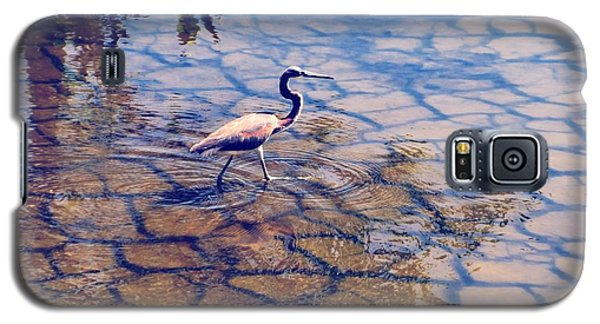 Florida Wetlands Wading Heron Galaxy S5 Case