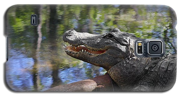Florida - Where The Alligator Smiles Galaxy S5 Case by Christine Till
