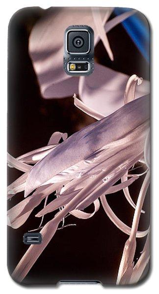 Florida Whites 2 Galaxy S5 Case