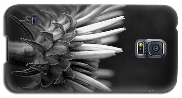 Flower 58 Galaxy S5 Case by Steven Macanka