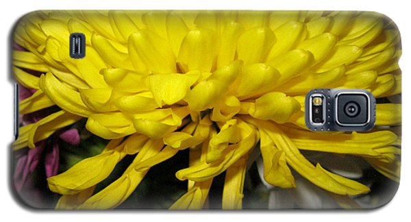 Yellow Queen. Beautiful Flowers Collection For Home Galaxy S5 Case