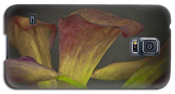 Flower #934 Galaxy S5 Case