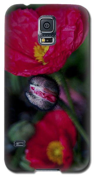Galaxy S5 Case featuring the photograph Flower Bud by Haleh Mahbod