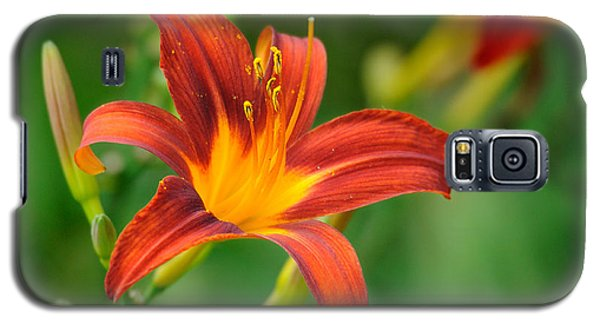 Flower Galaxy S5 Case