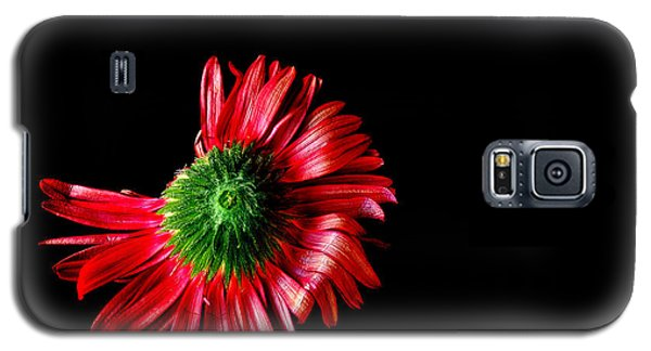 Galaxy S5 Case featuring the photograph Flower Down by Marwan Khoury