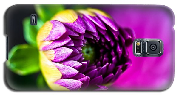 Dahlia  Galaxy S5 Case by Crystal Hoeveler