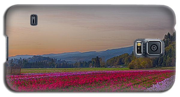 Flower Field At Sunset In A Standard Ratio Galaxy S5 Case