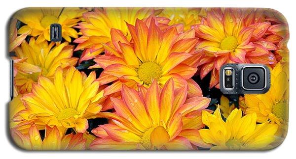 Flower  Galaxy S5 Case by Gandz Photography
