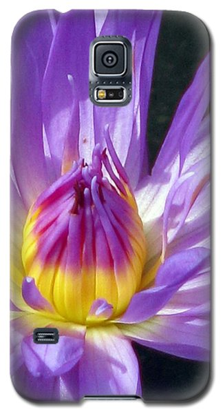 Flower Garden 70 Galaxy S5 Case