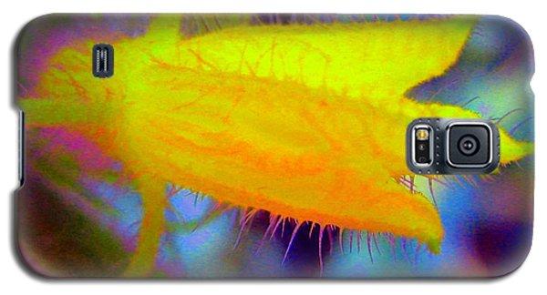 Flower - Garden - Cucumber Galaxy S5 Case by Susan Carella