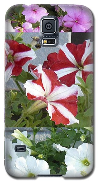 Flower Gardens Montage Galaxy S5 Case