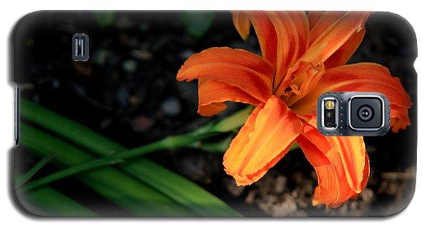 Flower In Backyard Galaxy S5 Case