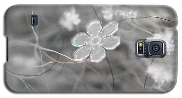 Galaxy S5 Case featuring the photograph Flower In The Snow by Stacey Zimmerman