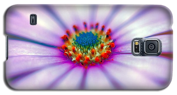 Flower In The Spring Galaxy S5 Case