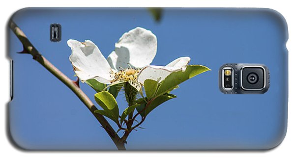 Flower In The Sun Galaxy S5 Case