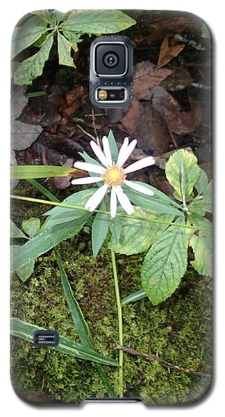 Galaxy S5 Case featuring the photograph Flower In The Woods by Robert Nickologianis