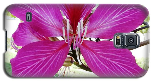 Galaxy S5 Case featuring the photograph Flower by Julia Ivanovna Willhite