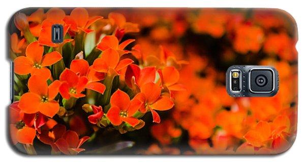 Flower Macro 1 Galaxy S5 Case
