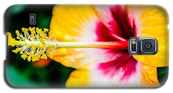 Flower Macro 2 Galaxy S5 Case