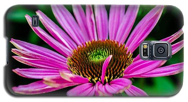 Flower Macro 3 Galaxy S5 Case