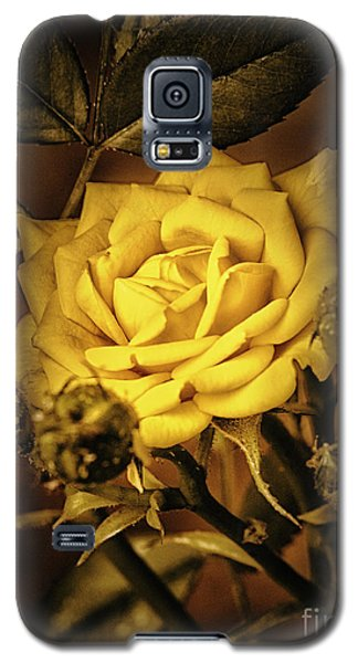 Flower Of Friendship  ... Galaxy S5 Case by Chuck Caramella